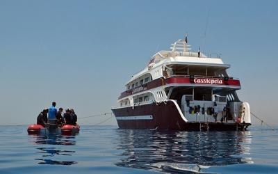 Cruise Cassiopeia Red Sea