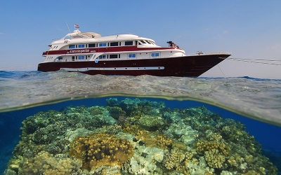 Scuba diving cruise Red Sea