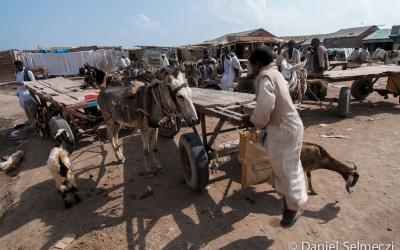 Szudán piac